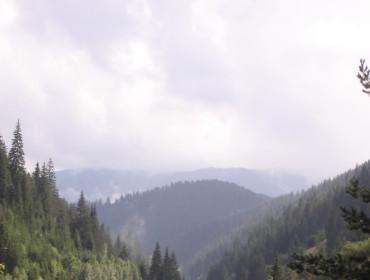 Rodopi. Fot. http://www.morguefile.com/