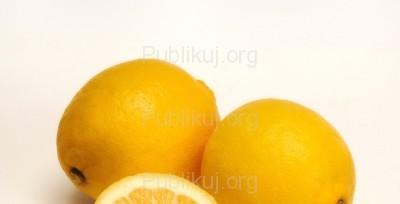 Fot. http://www.publikuj.org/