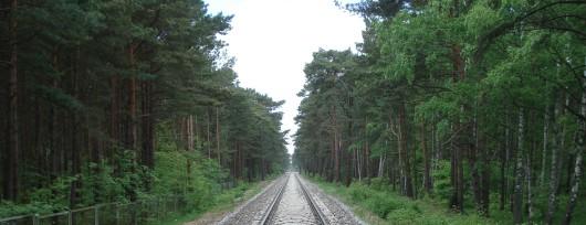 Szlak Jastarnia - Hel