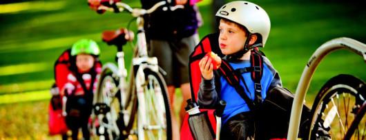 Przyczepka rowerowa i-Go Wee-hoo-3