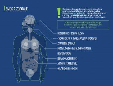 Infografika_SMOG-A-ZDROWIE